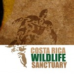 WILDLIFE SANCTUARY – MOIN – COSTA RICA