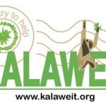 Kalaweit – Sauvegarde des gibbons – Indonésie